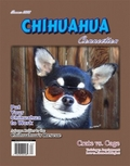 Chihuahua Connection Subscription
